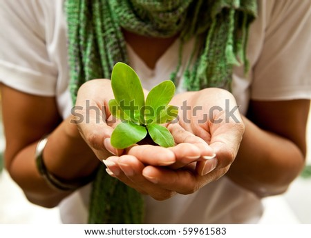 A small plant in a women's hand.
