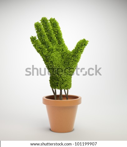 A small plant shaped like a human hand growing out of a pot