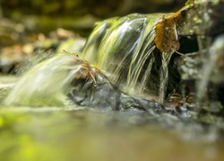 a small rapid river flows through dolomite rocks, long-term exposure, gentle and fuzzy river water, colorful autumn leaves and dry branches in the river