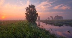 A small river at dawn in the mist among the meadows with beautiful clouds and a rising sun