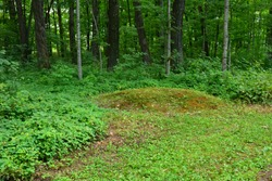 A small round conical shaped Native American Indian Burial Mound located at the Lizard Mound County Park in West Bend Wisconsin.  The mound is in a partially wooded area of the grounds.