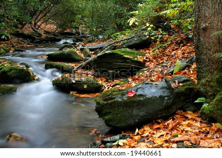 A small stream in VA called Rock Castle Creek during fall of the year.