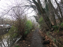 a small tree-lined path along the Seine river