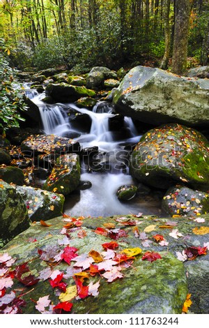A small water fall in the Smoky mountains with red leaves