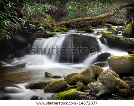 A small waterfall in the Blue Ridge Mountains with the milky water effect.  Moss covered rocks in the foreground, and mountain laurel in the background.