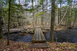 A small wooden bridge over a creek.