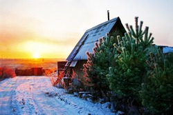 A small wooden house with fence and pines. Beautiful winter scenery with snowy road, fields afar and sky at sunset