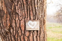 A small wooden plaque nailed to a tree with rough bark.  Small sign with a white heart painted on it with bokeh background.  Rough wooden bark in bright tan color.