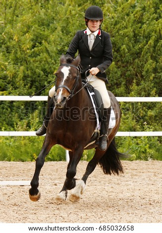 A smartly dressed woman taking part in a dressage horse riding competition on a bay welsh section D pony. She is in an all weather arena with a fence and trees in the background.