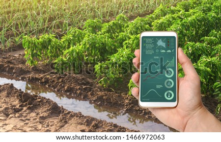 A smartphone with infographics on the background of bell pepper and leek onions plantations . Growing vegetables on the farm, harvesting for sale. Agribusiness and farming. Countryside #1466972063