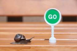 A snail crawling on a wooden bench in the direction of the green go sign. A slug and a toy go sign.