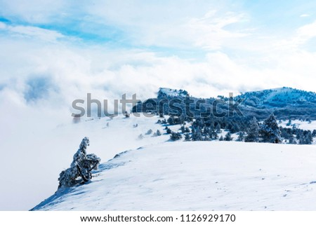 a snow covered slope #1126929170