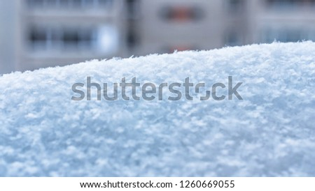 A Snowdrift with Snowflakes on a Blurred Apartment Building Background. Winter Season, Weather Forecast, Climate Change Image. #1260669055