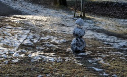 a snowman sadly slowly melting, dirty from mud and lack of snow will evoke a feeling of ruin and ugly changeable weather of winter February. frozen snow on lawn