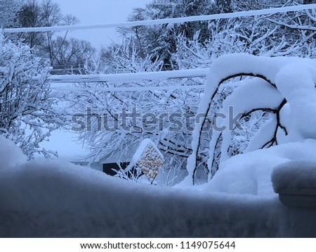 A snowy day #1149075644
