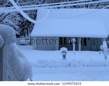 A snowy day #1149075653