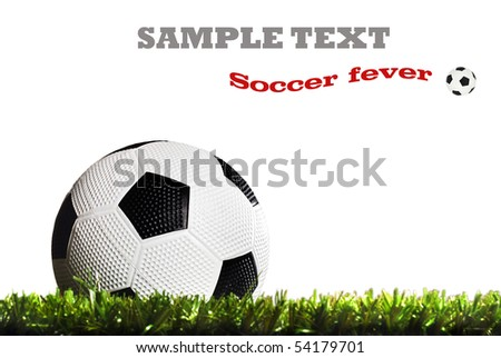 a Soccer ball on a soccer field - stock photo