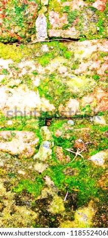 a soil texture edited pic for wallpaper