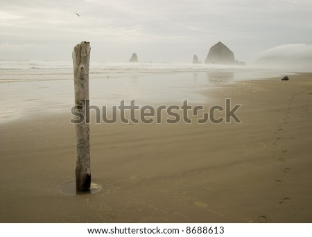 A solitary piling stands in the sand as mist covers Haystack Rock at Cannon Beach