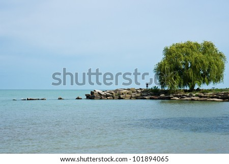 A solo person stands near a willow tree on a point of land jutting out into Lake Erie at Edgewater Park in Cleveland, Ohio