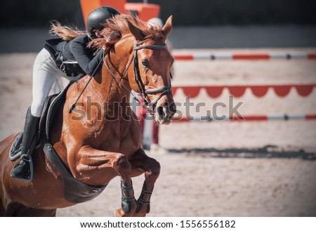 A sorrel horse with a flowing mane and with a girl rider in the saddle jumps over the barrier at a show jumping competition.