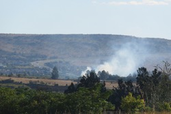 A South African grass field and green pastures farm landscape with rows of large lush green trees on the horizon, and smoke coming from a fire behind the trees in front of a hilltop under a blue sky
