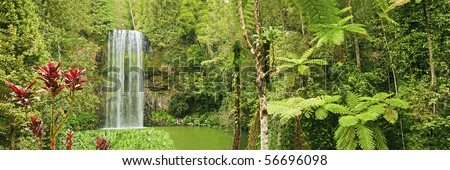 A spectacular panorama shot of the tropical Millaa Millaa waterfall in Queensland, Australia.