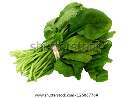 A spinach vegetable bundle isolated white