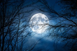 A spooky bare branch halloween trees against a winter blue night sky with a glowing full moon and clouds