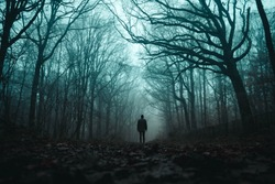 A spooky lone hooded figure in a foggy forest in winter with a dark muted edit