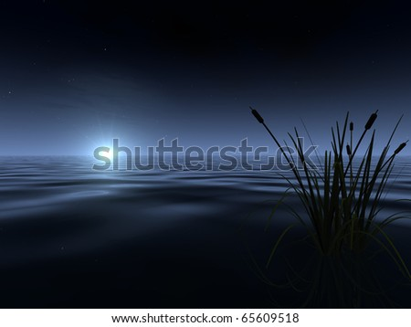 A spooky-looking moon rises above the gently rippled surface of a lake, illuminating a band of fog at the horizon. A silhouetted patch of reeds appears in the foreground.