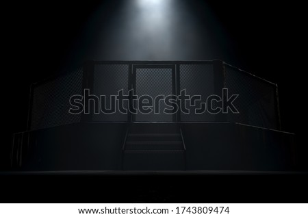 A spotlighting highlighting the door of a MMA fight cage arena dressed in black padding on a dark background - 3D render Stock photo ©