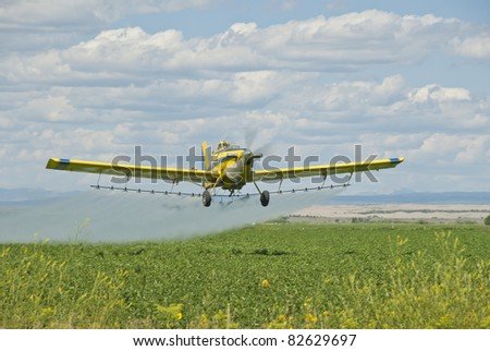 A spray plane applies chemicals to a field of potatoes.