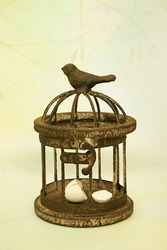 A springtime bird egg is broken inside a birdcage. Covers concepts like breaking free, captivity, and confinement.
