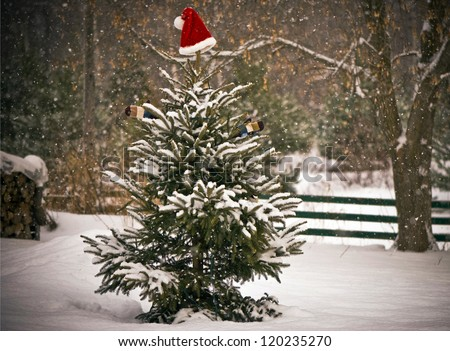 A Spruce tree in the snow  decorated with a Santa hat and mitts, and a little chickadee perched on one of its branches.