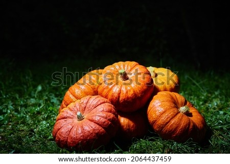 A stack of large orange pumpkins on the green grass at night. Autumn harvest, Halloween.
