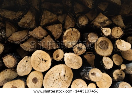 A stack of split and not split firewood