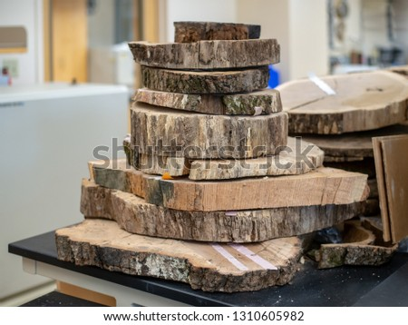 A stack of tree ring cross sections in a dendrochronolgy lab. #1310605982