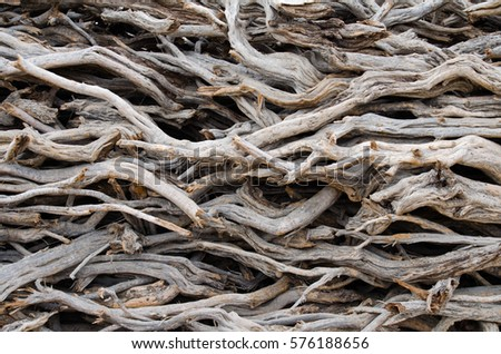 A stack of wood branches used for fire. #576188656