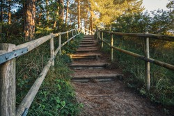 A staircase leads through the woods to the dunes.