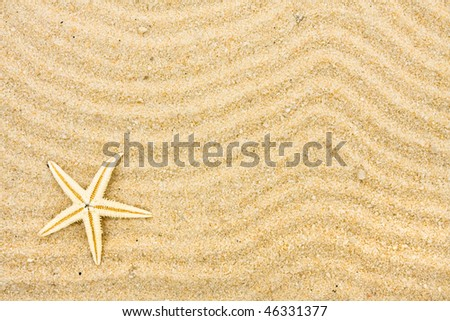 A starfish on sand with many lines drawn in it, beach background