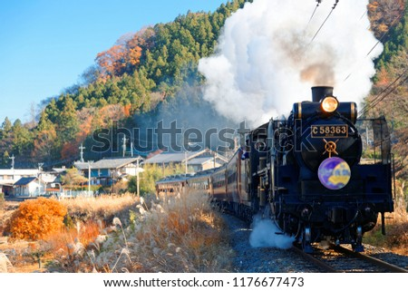 A steam locomotive traveling on Seibu Chichibu Railway through the idyllic countryside with fiery autumn trees on the mountainside & gold Miscanthus grass in the field on a sunny day in Saitama, Japan #1176677473