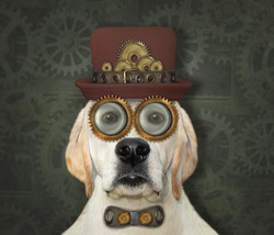 A steampunk dog is in a hat, a metal bow tie and glasses. Blue background.