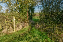 A stile in a hedgerow in the countryside over public footpath