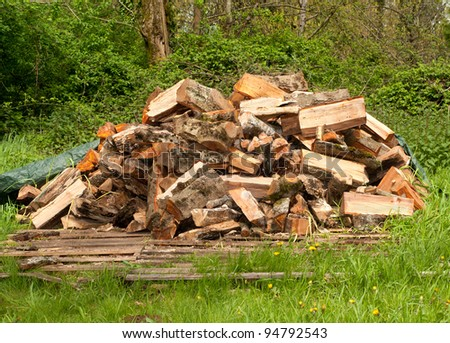 A Stockpile of Sawed Wood Ready to Use as Firewood for Winter Heat