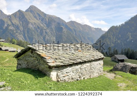 A stone hut in the Walser town of Follu, among high mountains, pine forests and green pastures, in summer, in Val d'Otro valley, Alps mountains, Italy Foto stock ©