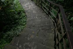 A stone staircase in the dark forest