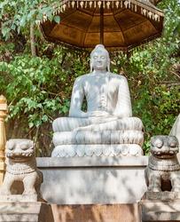 A stone statue of Buddha under a banyan tree in the Kelaniya Temple, Sri Lanka.