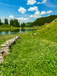 a stone wall as a pasture fence on Lake Körber in the middle of the flower-strewn meadow in the mountains of the Bregenz Forest. in the background forests and mountains. nine places, nine treasures