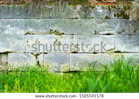a stone wall on which moss grows, grass grows under it and some vegetation hangs on top #1505541578